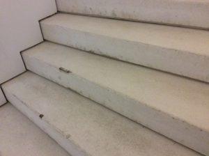 MAAT: escada no interior do museu Foto: MIR, 2016
